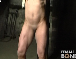 Female bodybuilder Slave Lauren Is chained up naked in the dungeon, wearing nothing but high heels. Enjoy looking at the muscles of her glutes, legs, pecs and biceps and at her ass and pussy in close-up for as long as you like. She's not going anywhere.